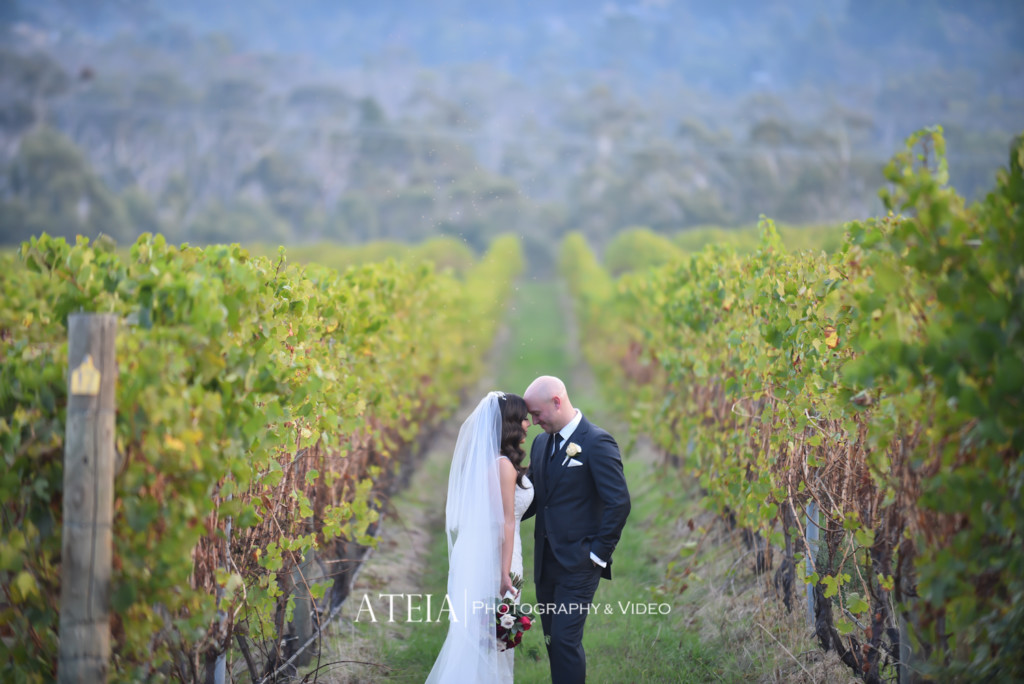 , Wedding Photography Melbourne – Vines at Helen's Hill