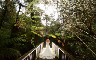 Melbourne Wedding Photography, Home