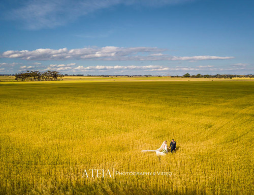 Wedding Photography Melbourne – Russo Estate Winery