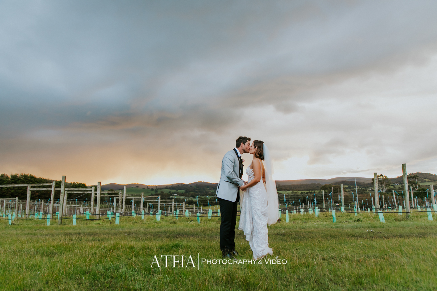 , Immerse Winery Yarra Valley Wedding Photography