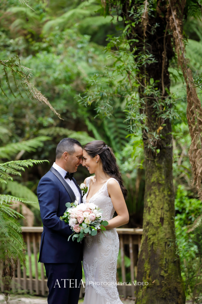 , Lyrebird Falls Wedding Photography Melbourne by ATEIA Photography & Video